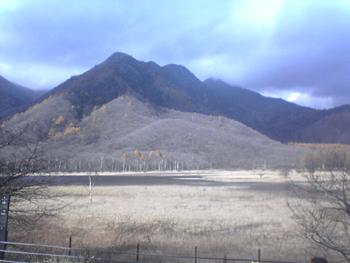 日光国立公園内奥日光(Nikko)の湿原戦場ヶ原か小田代原(Odashiro)辺り