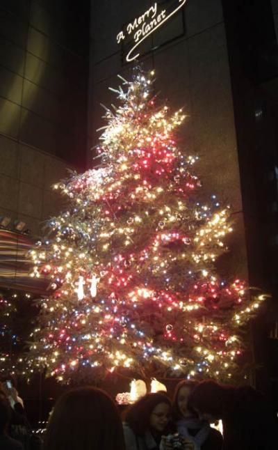 ミキモト真珠「銀座店」前のクリスマスツリーイルミネーション(Mikimoto-Pearl-Ginza)