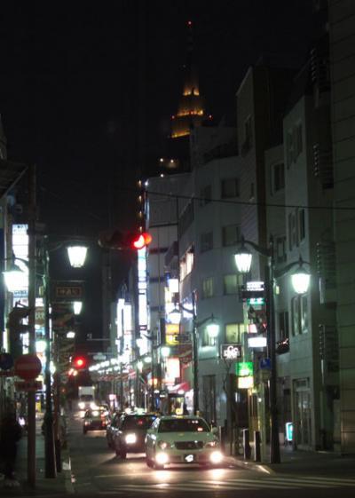 新宿二丁目(Tokyo Shinjyuku 2Chome)仲通りからドコモタワー(Docomo Tower)を望む写真