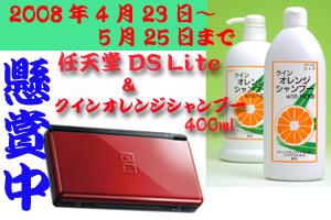 任天堂DS Lite + クインオレンジシャンプー懸賞中