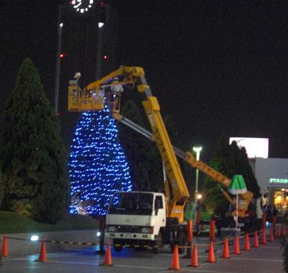 2009年クリスマス飾り開始第一号、飾り中!1本目を目撃!