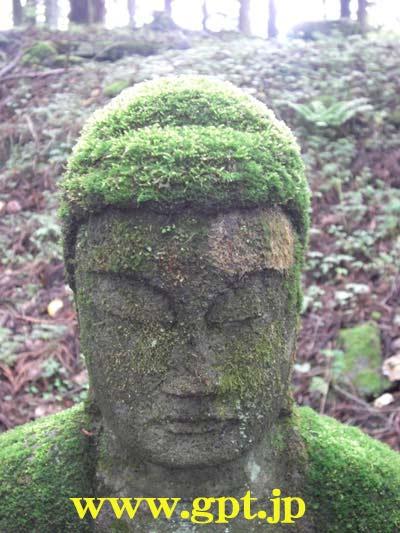 日光・滝尾神社方面の石仏にも、数百年で髪が生えた