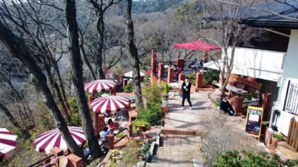 神奈川県鎌倉・カフェテラス 樹ガーデン2015.3.22Kamakura Itsuki Garden